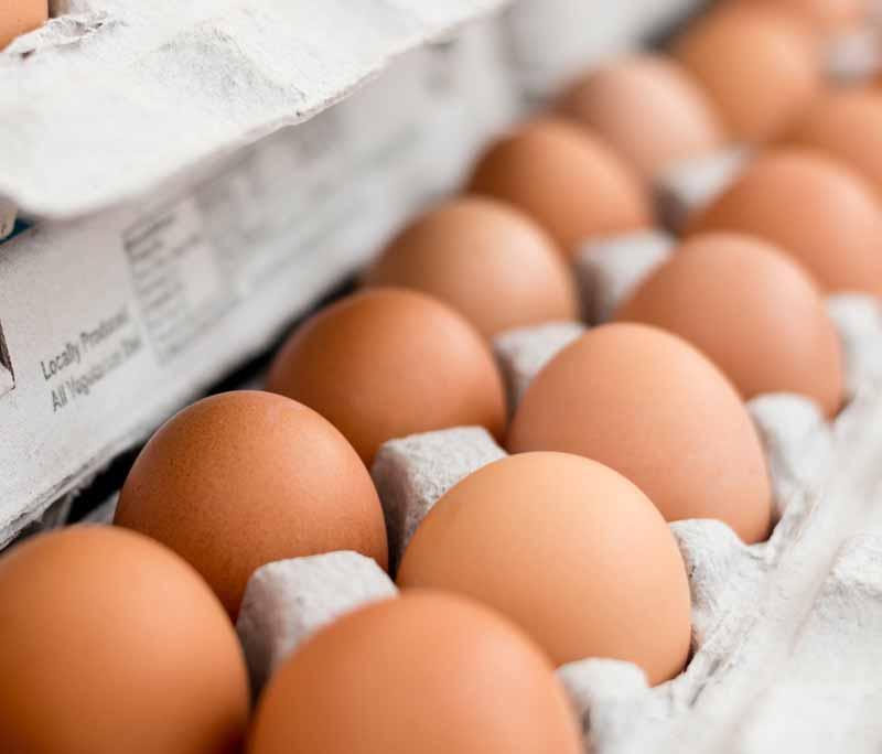 Vier de internationale Dag van het ei met deze 5 recepten