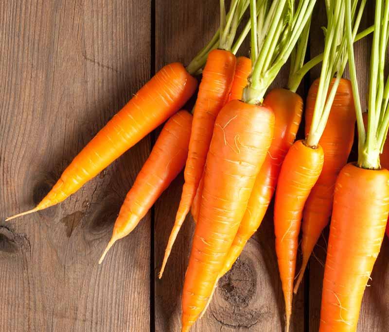Van ADH tot zoetstoffen: dit is het Actify voedingsalfabet