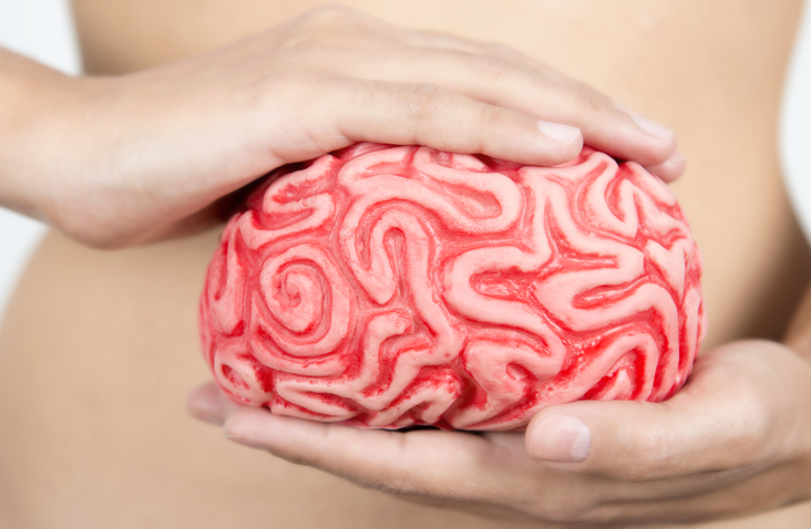 Blogpost: Lekker in je vel? Eet je darmen en hersenen gezond!